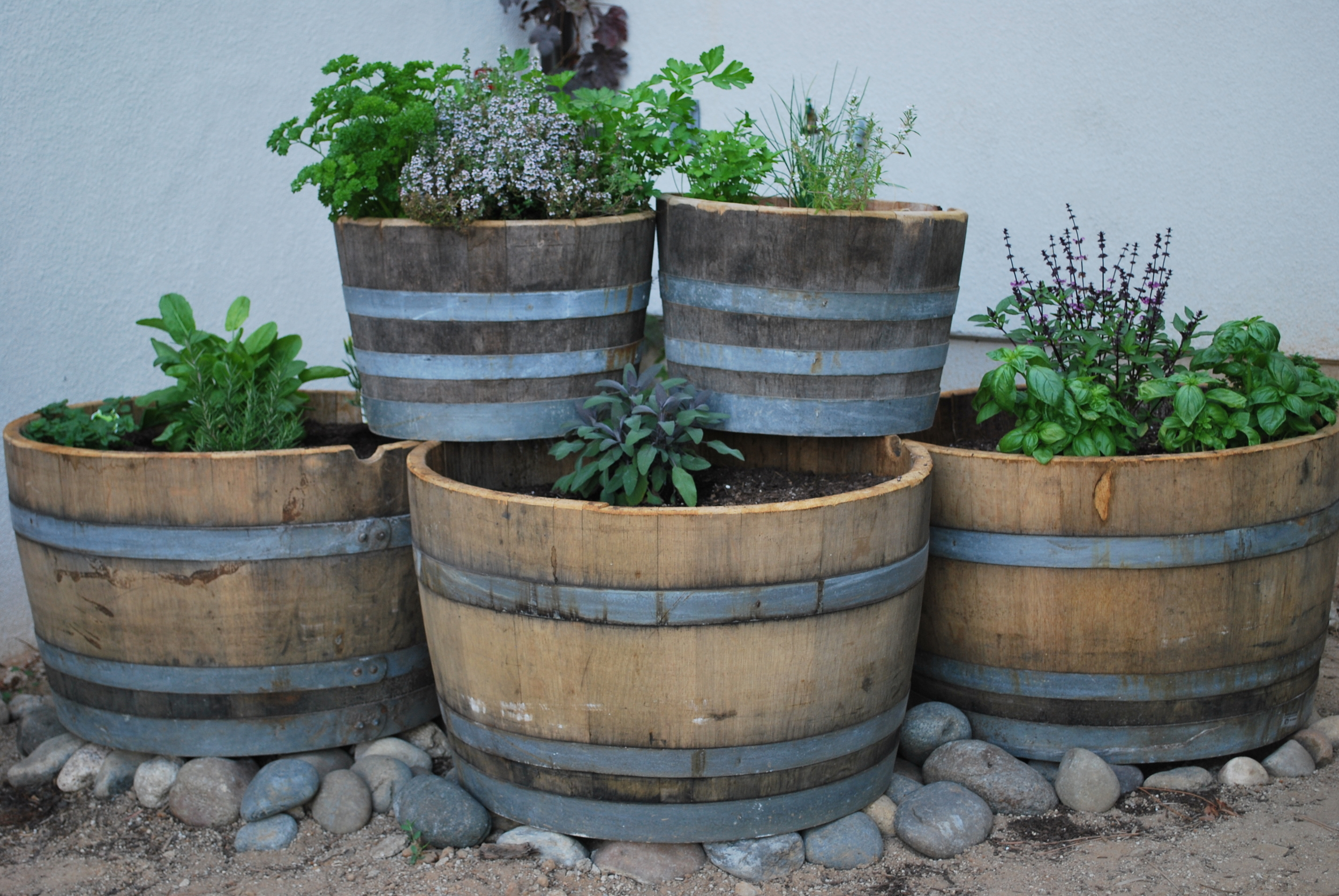 Tips For A Great Wine Barrel Garden