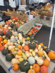 when-to-harvest-winter-squash