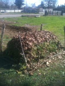 guide-making-compost-at-home