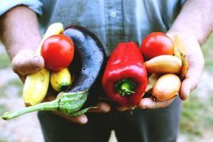 Jesse with a fresh harvest. Photography by Janae Alyssa Lloyd