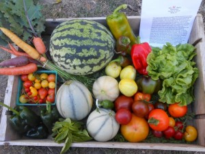 Red H Farm CSA box