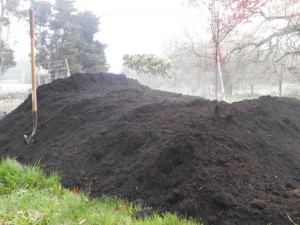 Fresh Compost at Red H Farm
