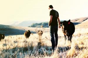 True Grass Farms Rancher