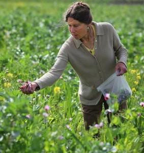 Wendy Krupnick, Local Farmer