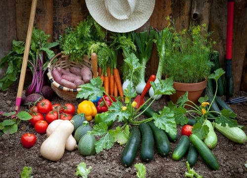 garden resolutions: which crops to plan for
