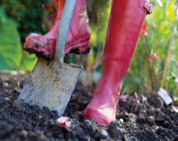wet soil spring