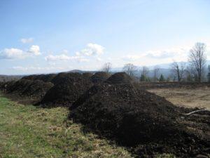 Compost 008